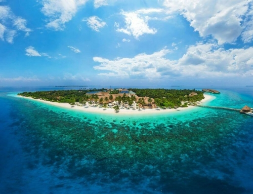 Tropical Bio Luxury Island Paradise in Maldives – Reethi Faru Resort