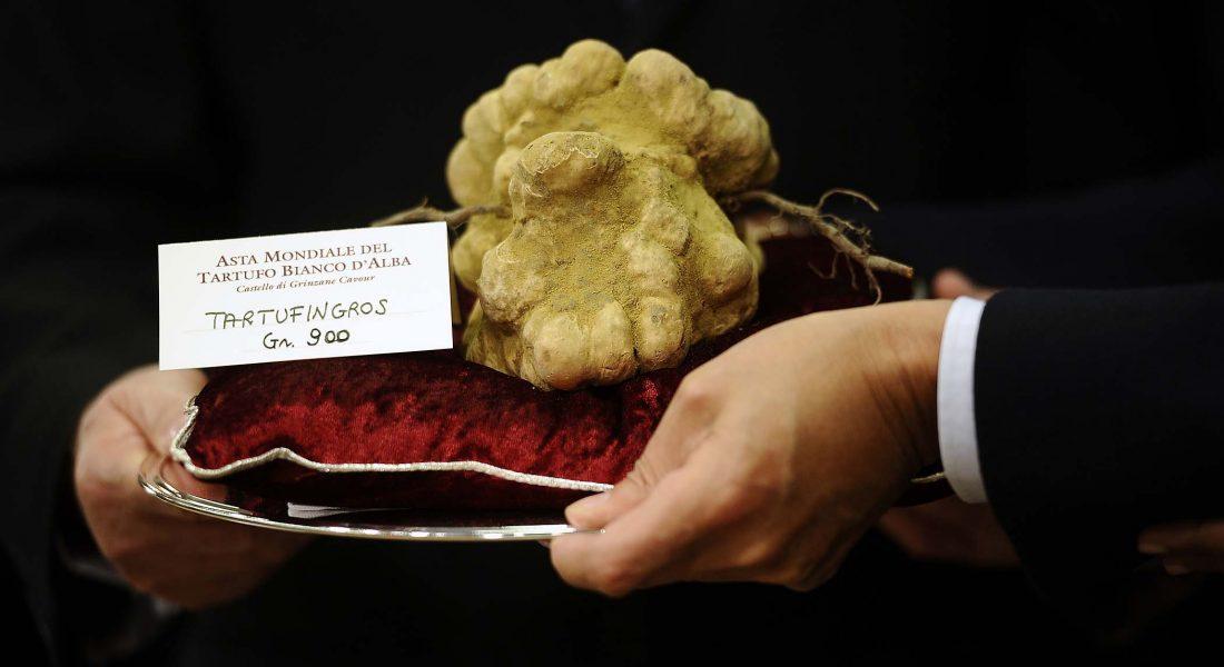 White Truffle Tour in Alba, Piedmont, Italy: Top 4 Restaurants