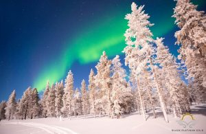 Finnish Lapland in Style: Northern Lights from a Luxury Glass Igloo