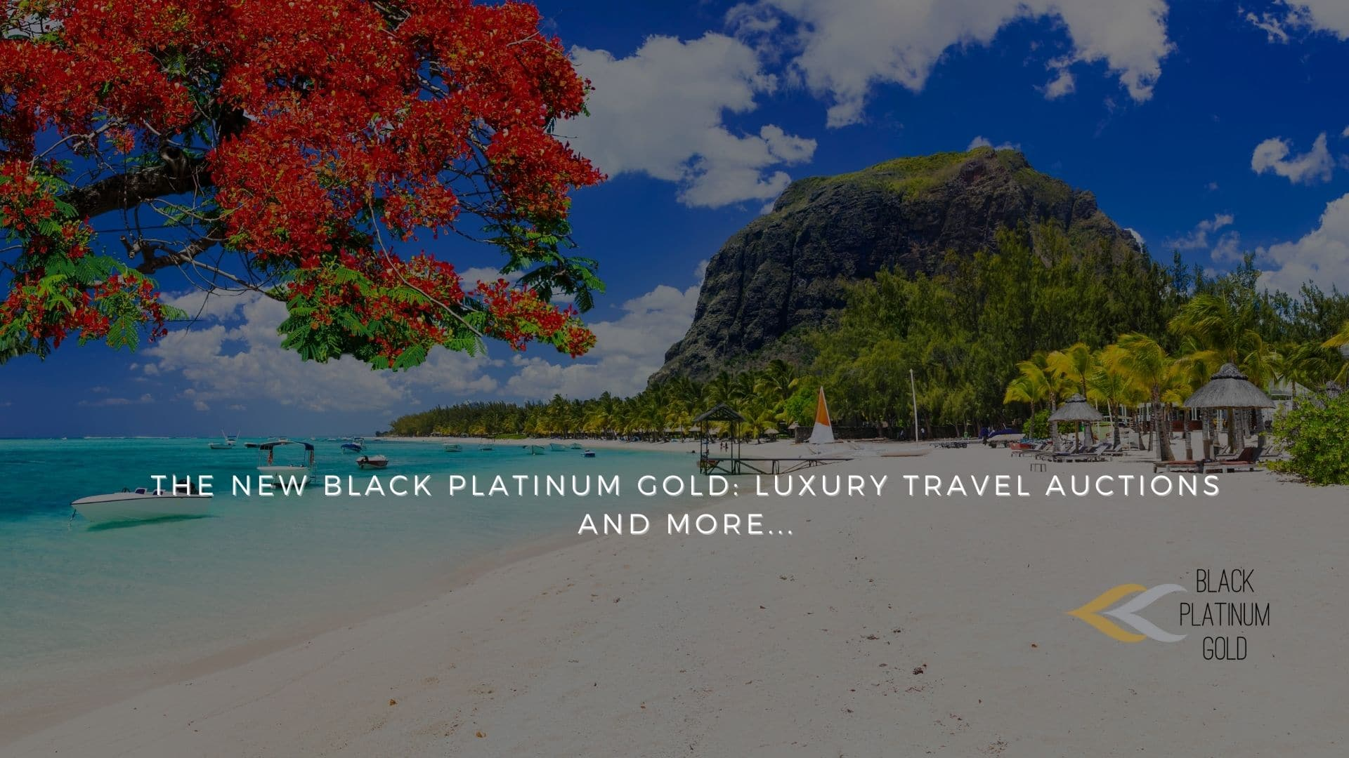 The New Black Platinum Gold: luxury travel auctions and more…
