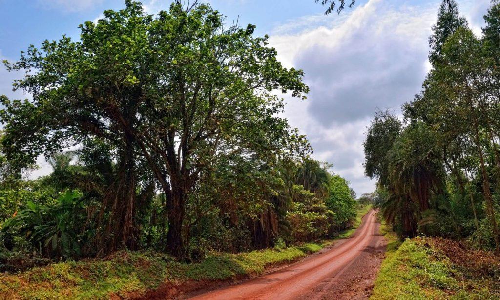 Ssese Islands, Uganda