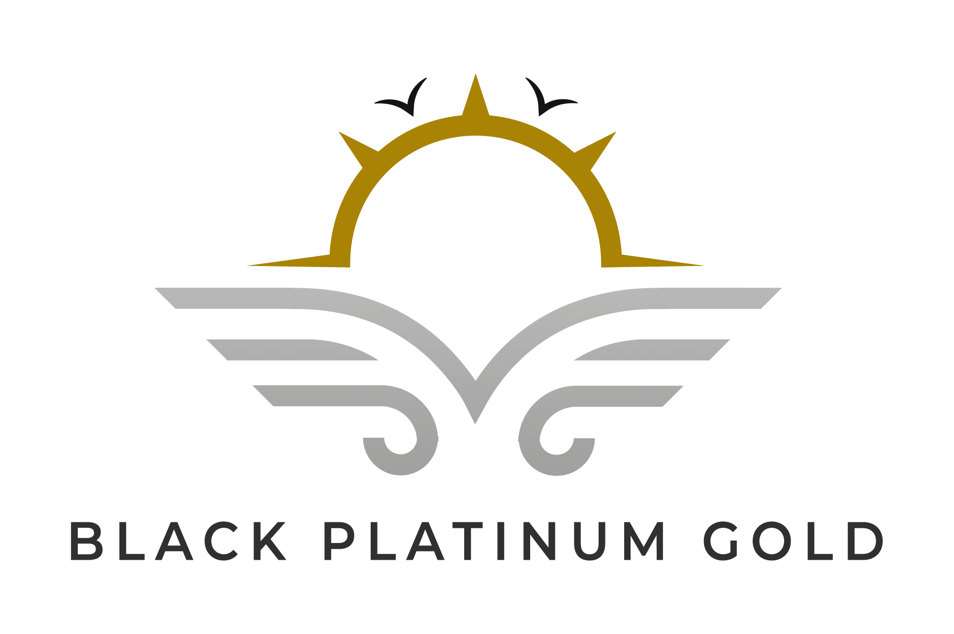 Black Platinum Gold - Luxury Travel Auctions