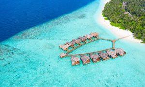 How to Become a Luxury Travel Advisor - Black Platinum Gold