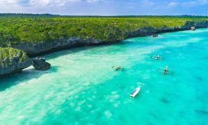 Zanzibar: Ultimate Guide to the Tropical Paradise of Relaxation – Black Platinum Gold