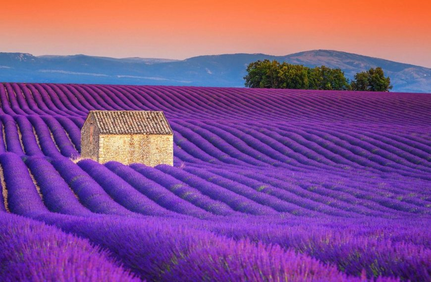 The Beauty of Summer Holiday in France