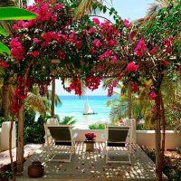 Zanzibar – 4 Nights at The Aiyana Resort & Spa, Pemba Island