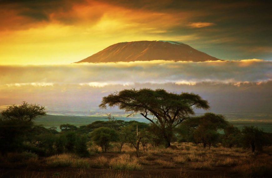 How to Plan The Ultimate Trip To Kilimanjaro