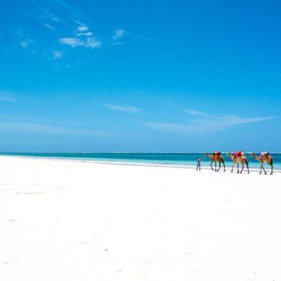 Kenya Tour – 13 Days for 2 People Safari & White Sand Beaches