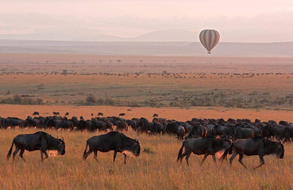 Top 9 Things To Do in Kenya | Black Platinum Gold