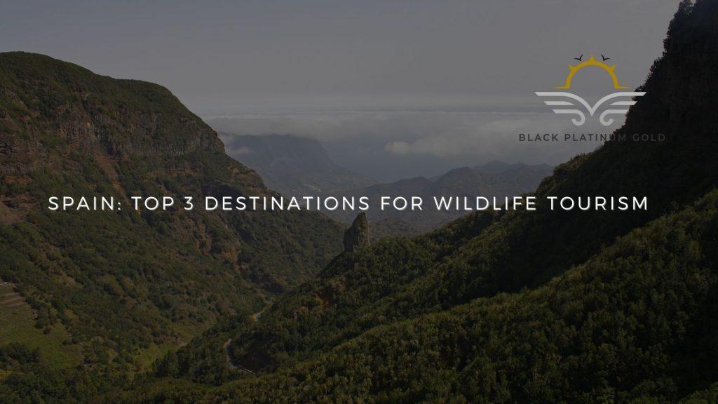 Spain: Top 3 Destinations For Wildlife Tourism