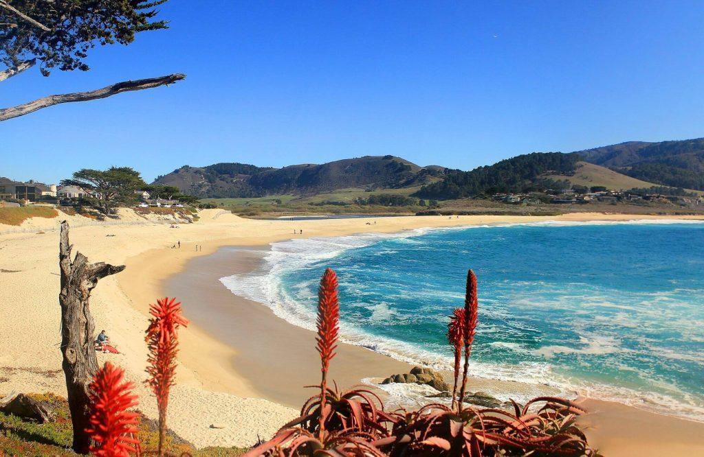 The Ultimate California Road Trip | Black Platinum Gold